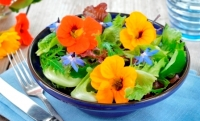Tomato Nasturtium Salad with Dates